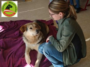 katrin-petke-therapiehund-zertifiziert