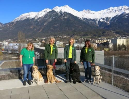 Stressabbau durch Hunde-Besuche